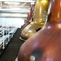 Tamdhu distillery speyside scotland - www.speller.nl - WhiskySpeller - 2016 - 27.1.0