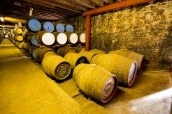 Tamdhu distillery speyside scotland - www.speller.nl - WhiskySpeller - 2016 - 36.0